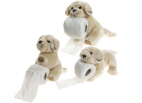 10 inch  pups with toilet roll